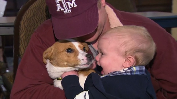 Grieving family reunited with their lost dog