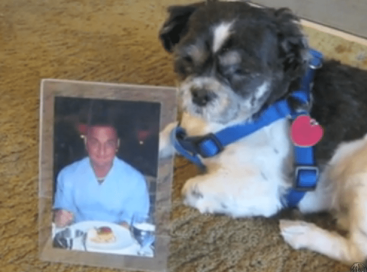Man's dying wish for his dog fulfilled almost three years later