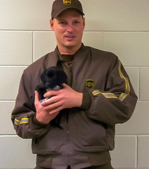 UPS driver rescues puppies from side of the road