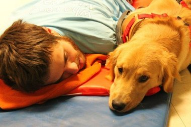 Assistance dog has changed a young man's life