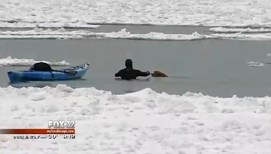 Kayaker Rescues Dog from Lake Michigan
