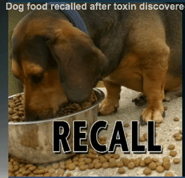 Dog food recall from Hy-Vee grocery stores underway