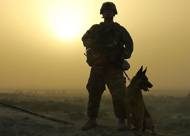 "Documentary ""Glory Hounds"" gives an up close look at Military Working Dog Teams"