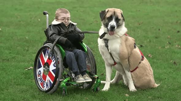 Το πιο συγκινητικό βίντεο που έχετε δει: Οι καλύτεροι φίλοι για μια ζωή!