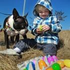 Dog Easter Egg Hunt Helps Autistic Kids