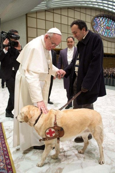 Pope Francis Makes Exception to Bless Guide Dog