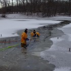 Dog Survives 45 Minutes in Semi-Frozen Pond Before Being Rescued by Firefighters