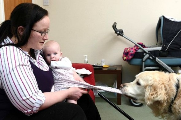 Assistance Dog Helps Disabled New Mother Take Care Of Her Baby