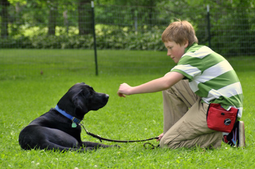13-Year-Old Raises Puppy to Be Guide Dog to the Blind
