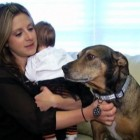 Infant-Saving Dog Honored
