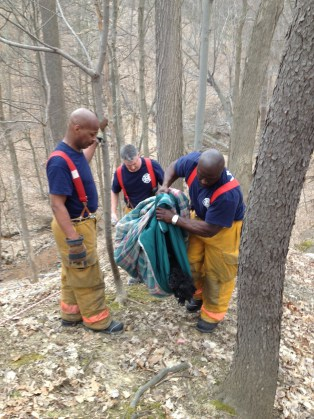 Firefighters Rescue Dog From Ravine