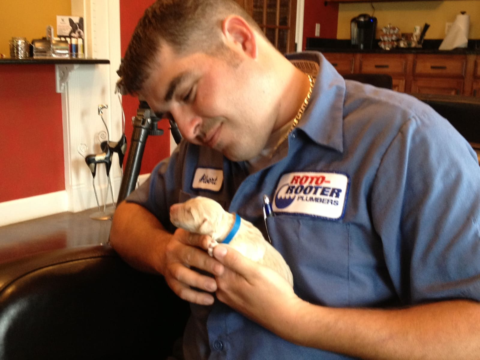 Plumber Rescues Newborn Puppy From Drain Pipe