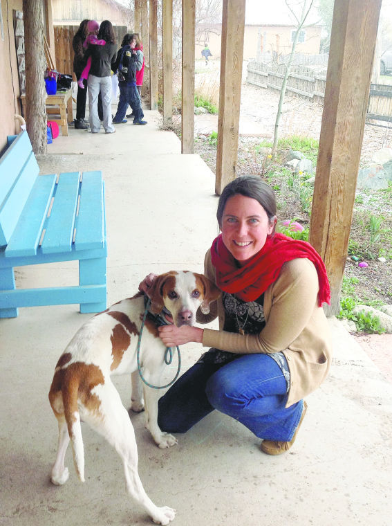 Dog Travels Over 972 Miles To Find A New Home