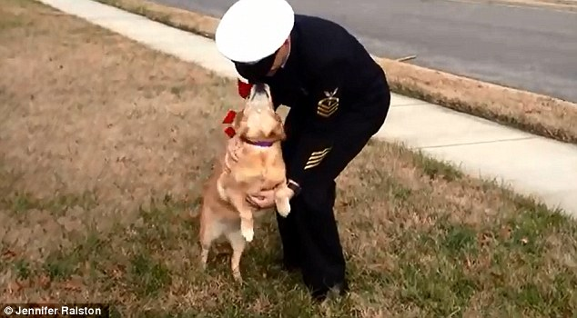 Dog Defies Cancer To See Her Owner Again