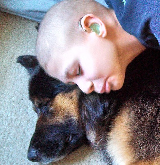 Dog Rescued From Neglect Is Now Helping Young Boy Battle Cancer