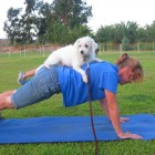 Dog Ownership Linked to Reduced Heart Risks
