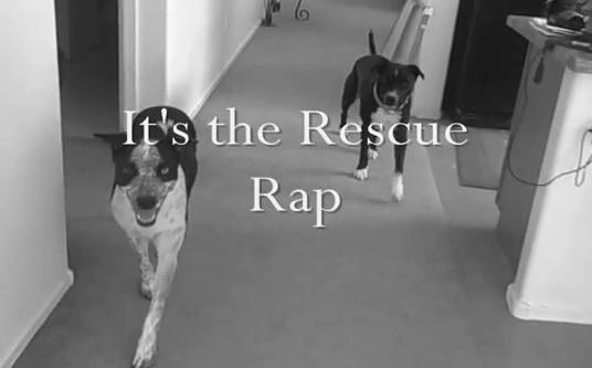 The Rescue Rap