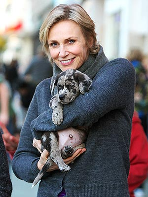 Jane Lynch and Her Pup Advocate for Shelter Dogs in PBS Series