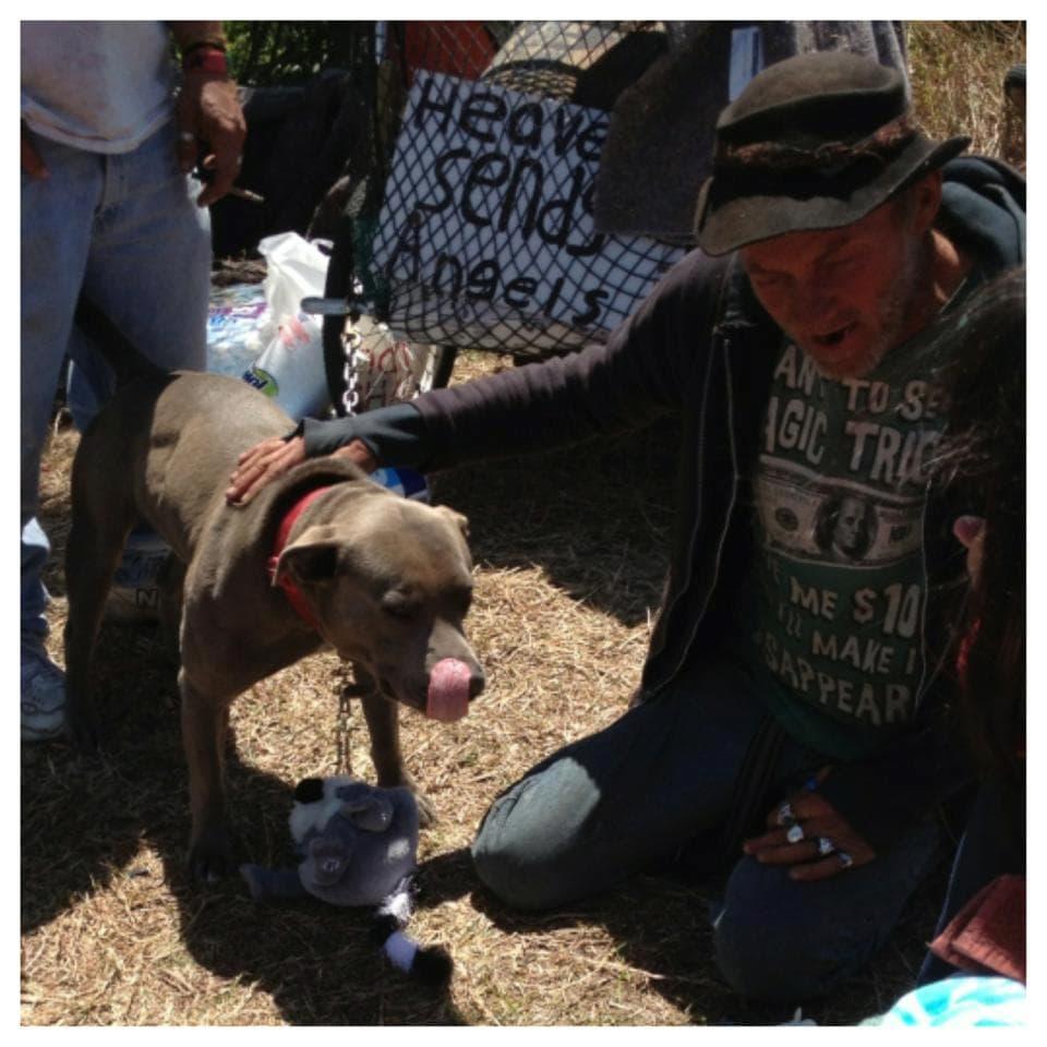 Homeless Boy Gets Bedroom For Christmas: Homeless Florida Man's Dog Stolen