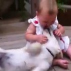 Baby and Puppy Loving the Crap out of Each Other