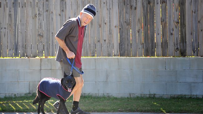 Elderly Man Walks 300 km to Find Missing Dog
