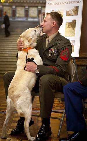Marine Finally Reunited with Dog that Served Alongside Him