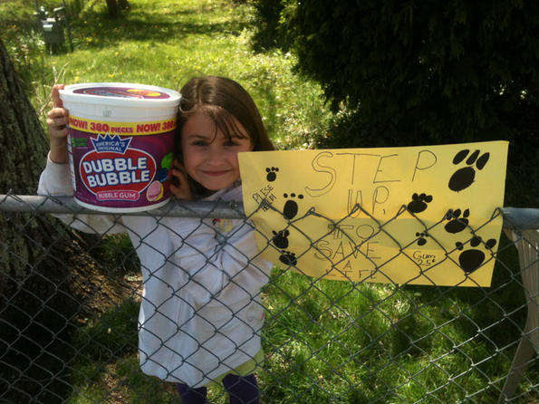 Third Grader Raising Money to Pay for Shelter Dogs' Adoption Fees