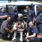 Lost Service Dog Reunited with Nine-Year-Old Boy