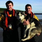 Husky saved from the sea by RNLI volunteers