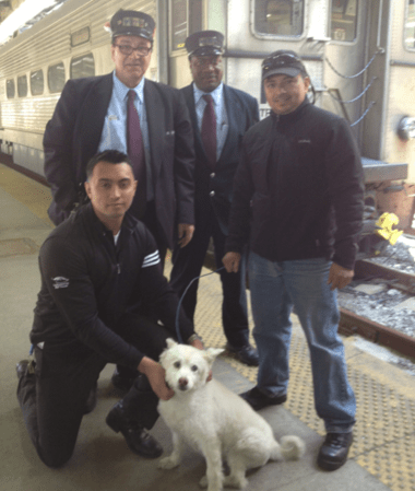 NJ Transit Workers Rescue Lost Dog