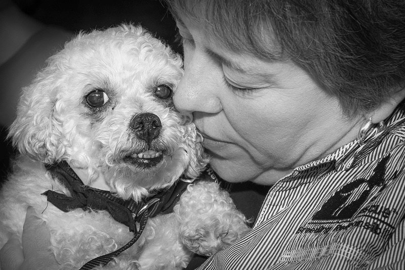 Puppy mill dog rescuer loses home in Colo. Fire and keeps on helping animals