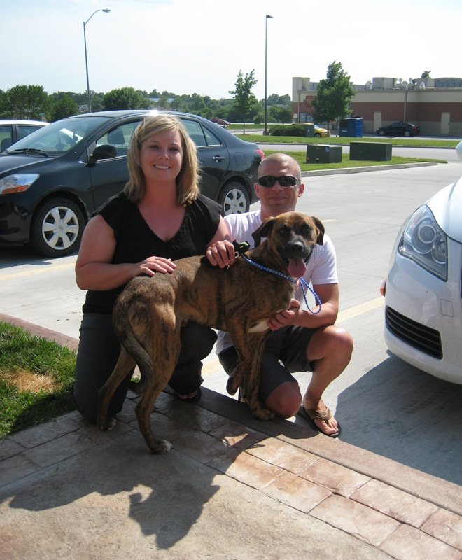 Jonsey Finds Forever Home 40 Days after Hit-and-Run Incident