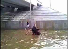 Dog Pushes Man in Wheelchair Through Flooded Street