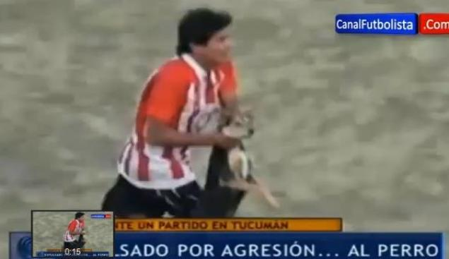 Argentine Soccer Player Kicked off Team for Throwing Dog
