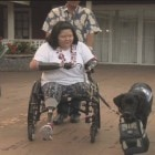 Quadruple Amputee Veteran Adapts to New Life with Help of Service Dog