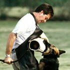 Separating Emotion, When Is It Time? Expert Advice About Retiring Your Dog From Agility