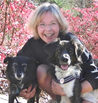 "Blogger and Author Leslie May Discusses What it Really Means to ""Raise a Green Dog"""