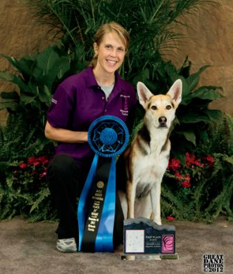 How a Homeless Dog with Behavioral Issues Became a National Agility Champion