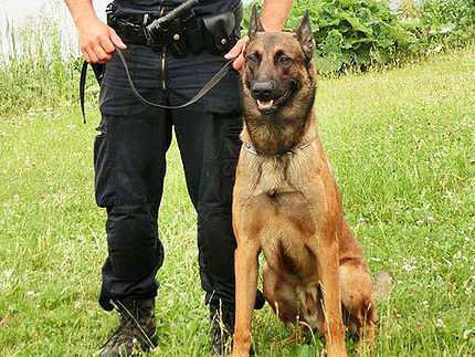 Police Dog Saves Man's Life