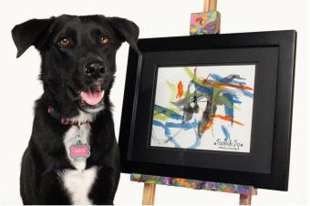 Painting Dog Raising Money for Tornado Victims