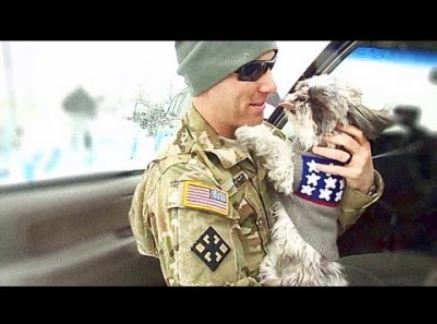 Puppy Welcomes Home Soldier Daddy from Afghanistan