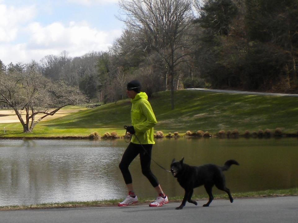 Dogs Have Humans on the Lead in a New Sport — Camicross