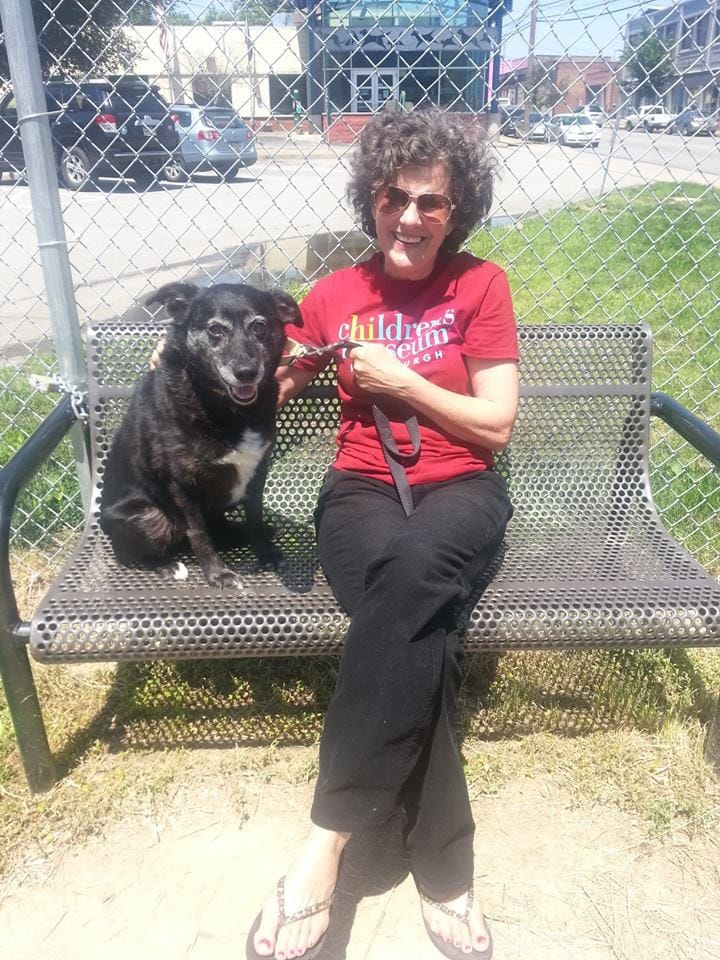 Shelter Volunteer Celebrates Birthday by Helping Find Senior Dogs Homes