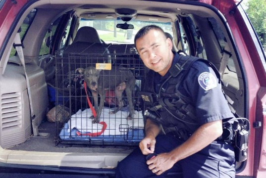 Police Officer Rescues Stray Puppy