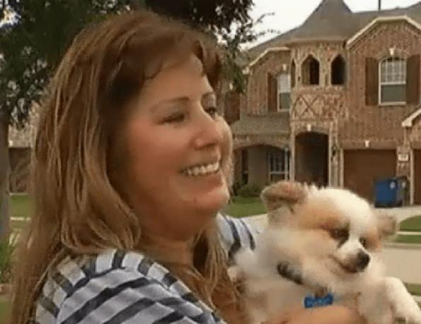 Good Samaritan Rescues Dog from Storm Drain