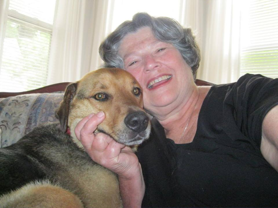 Dog to be Reunited with Family after Missing for Nine Months