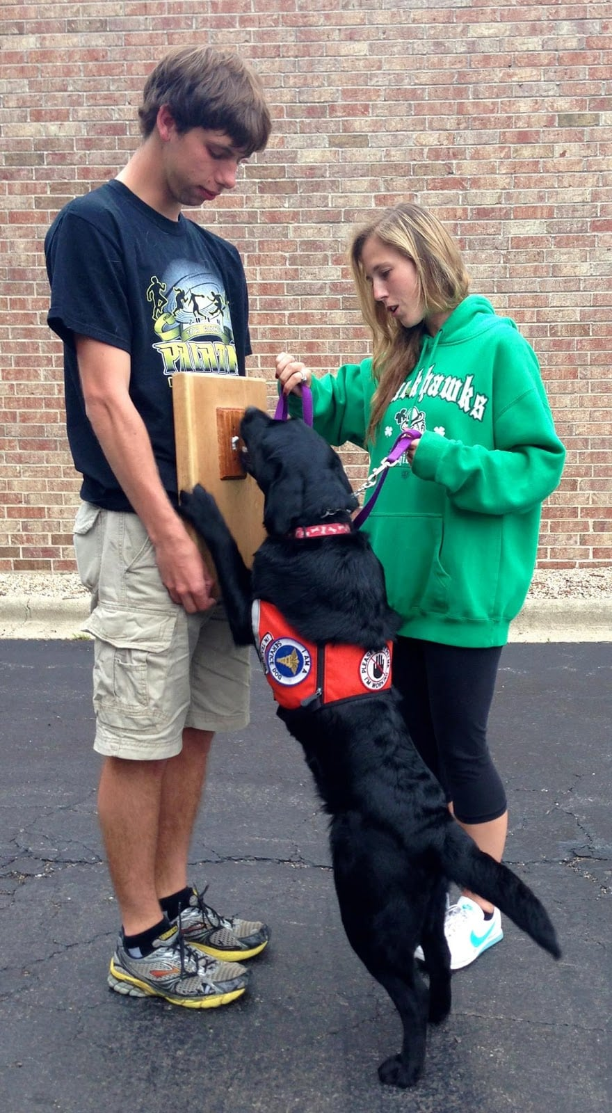 U of I Service Dogs Get Ready for Fall 2013