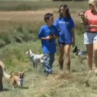 Children Help Dogs in Need by Participating in Summer Dog Camp