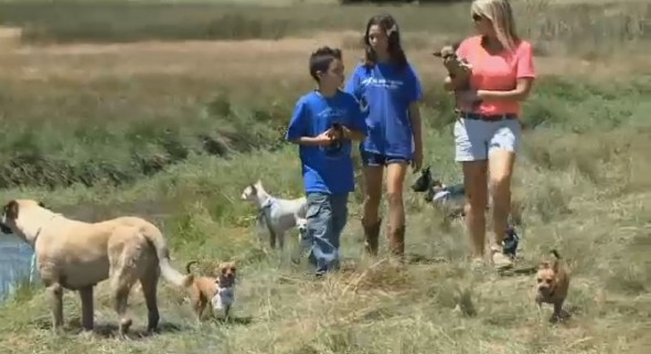 Beth DeCaprio and children participating in the summer dog camp. Photo Credit: CBS Sacramento