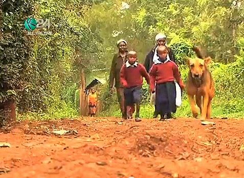 7.10.13 - Dog Adopts Kids3